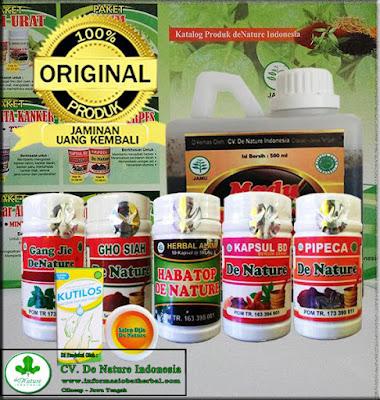 Cara Mengobati Kutil Kelamin Herbal Menggunakan Bawang Putih