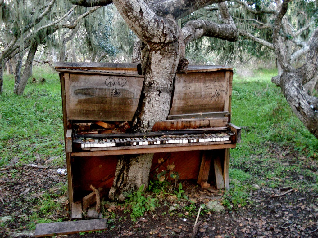The Piano Tree
