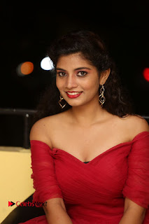 Bindu Pictures in Red Dress at Attarillu Movie Press Meet    ~ Bollywood and South Indian Cinema Actress Exclusive Picture Galleries