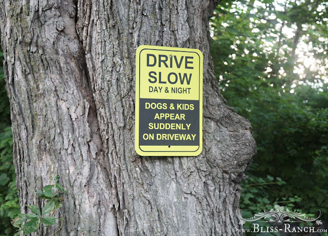 Drive Slow Driveway Sign, Bliss-Ranch.com