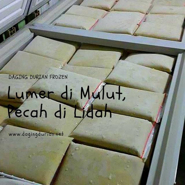 jual-daging-durian-medan-berkualitas-di-purworejo