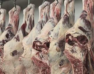daging yang didinginkan