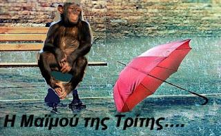 «Βροχερές» μπανάνες σήμερα από την μαϊμού του Αθλητισμού της Λέσβου