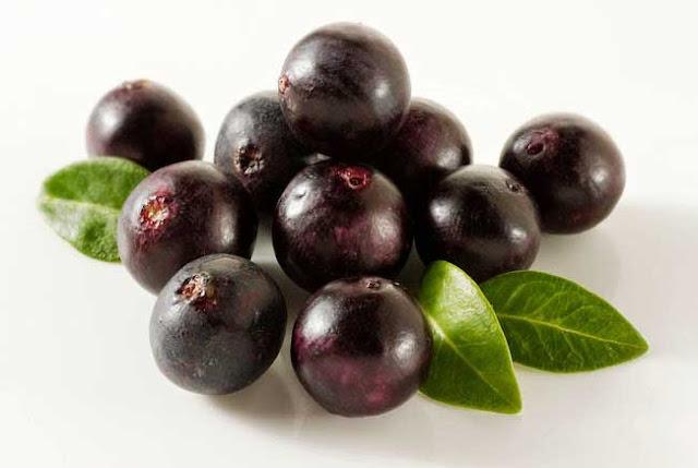 Manfaat Blueberry Meningkatkan Memori