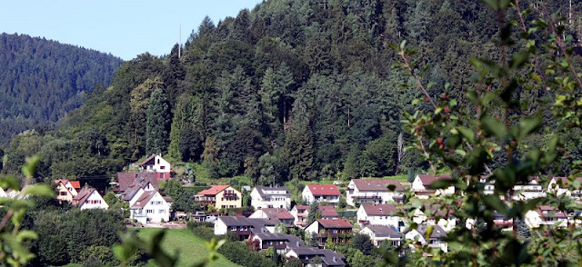 Passeio à Floresta Negra desde Frankfurt