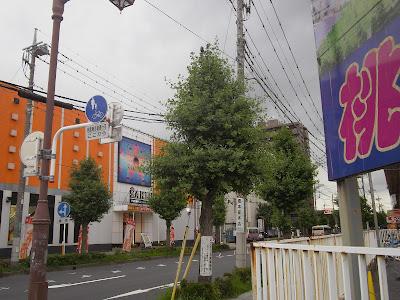埼玉県の市役所からのご依頼でムクドリ対策機を設置