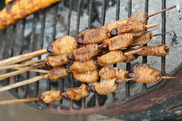 Suri, gusano del aguaje, gastronomía de la selva, comidas curiosas de la selva