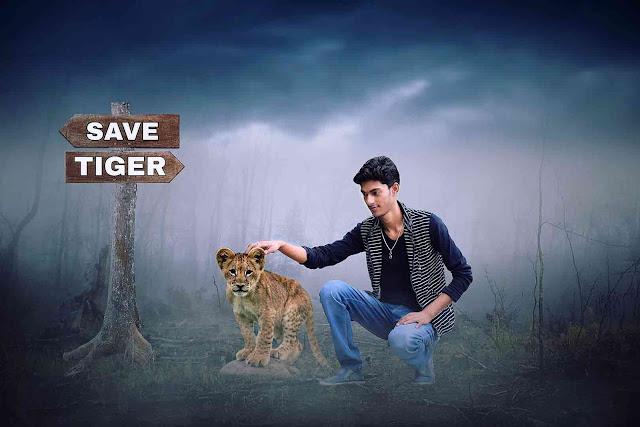 Don't Kill Tiger Save Their Life Photo Manipulation