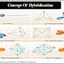 Concept Of Hybridization