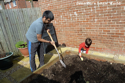 Digging in the vegetable patch