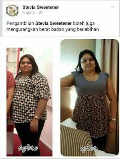 testimoni kurus dengan stevia