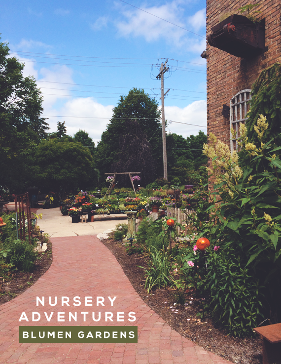 Nursery Adventures: Blumen Gardens // Bubby and Bean