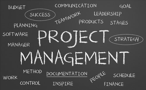 PROJECT MANAGEMENT FOR SENIOR EXECUTIVES