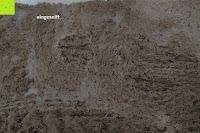 """eingeseift: Norcho Weiche Mikrofaser Badematte Luxus Rutschfest Antibakteriell Gummi Teppich 27""""x18"""" Khaki"""