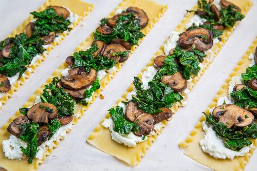 Mushroom Lasagna Roll Ups in Creamy Gorgonzola Cauliflower Sauce