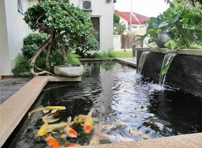 Desain kolam ikan minimalis di lahan sempit, gambar kolam ikan hias mininalis di depan rumah