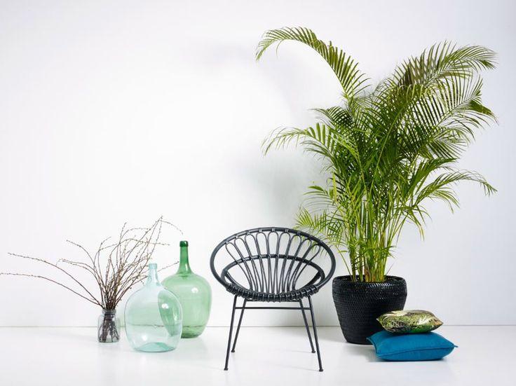 Rw paisagismo mobili rio cadeira roxanne for J g mobiliario