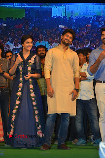 Nenu Local Audio Launch Stills  0032.JPG