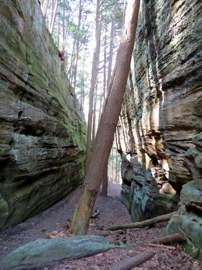 Buckeye Trail Ohio near Hocking Hills