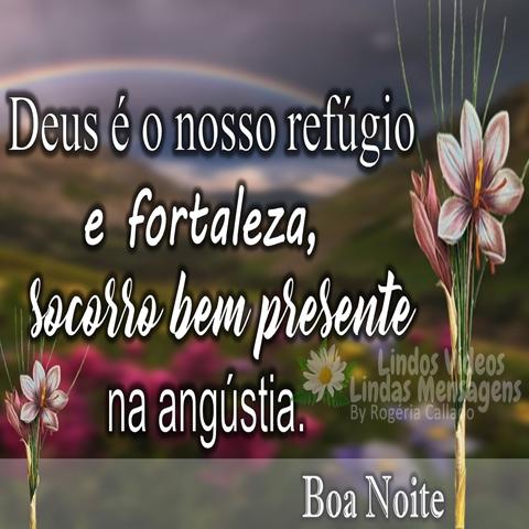 Deus é o nosso refúgio  e fortaleza,  socorro bem presente  na angústia.  Boa Noite!