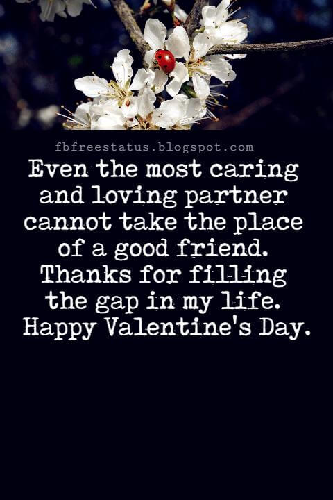 Valentines Day Messages For Friends, Even the most caring and loving partner cannot take the place of a good friend. Thanks for filling the gap in my life. Happy Valentine's Day.
