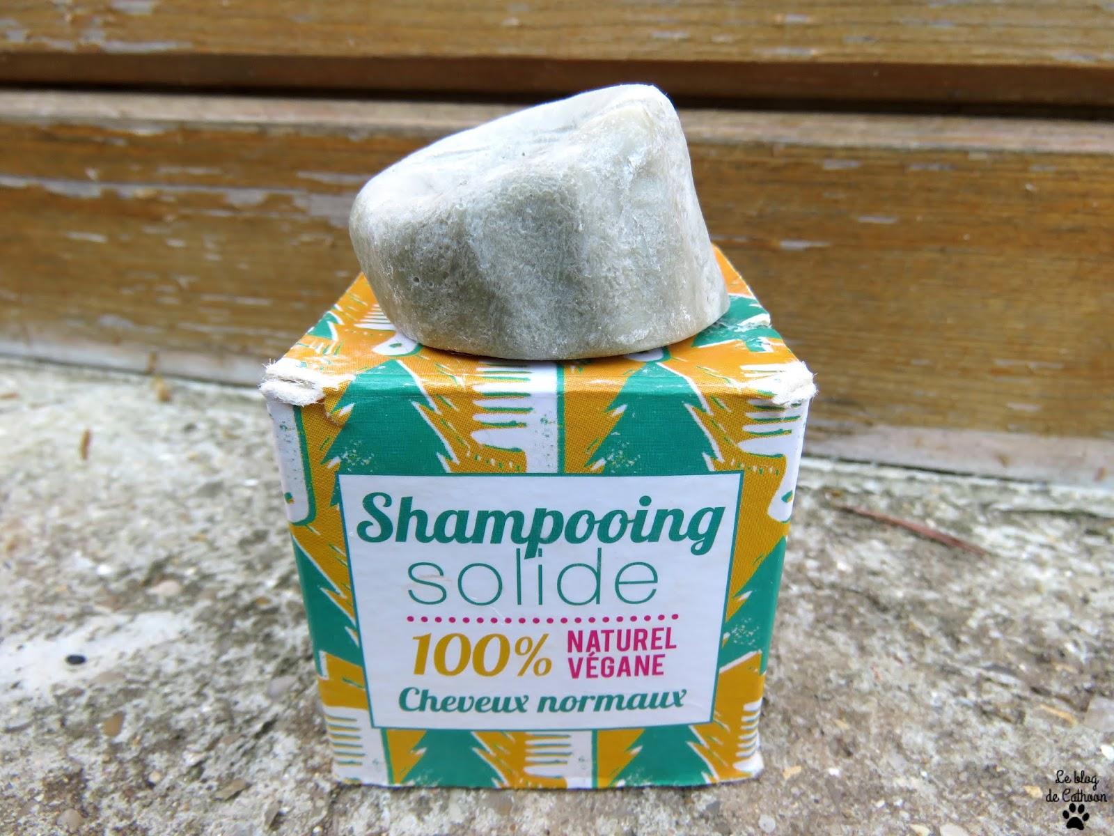 Le shampoing solide ou liquide en shampoing pour pinceau