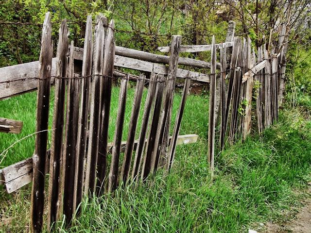 """Un gard """"ştirb"""" este un subiect interesant - blog FOTO-IDEEA"""