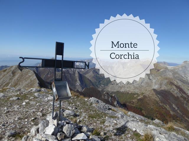 Escursione sul Monte Corchia da Passo di Croce: la vetta