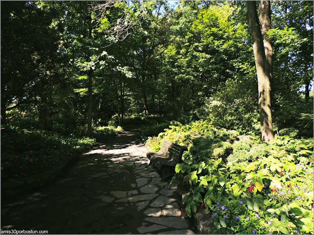 Caminos del Shade Garden en el Jardín Botánico de Montreal