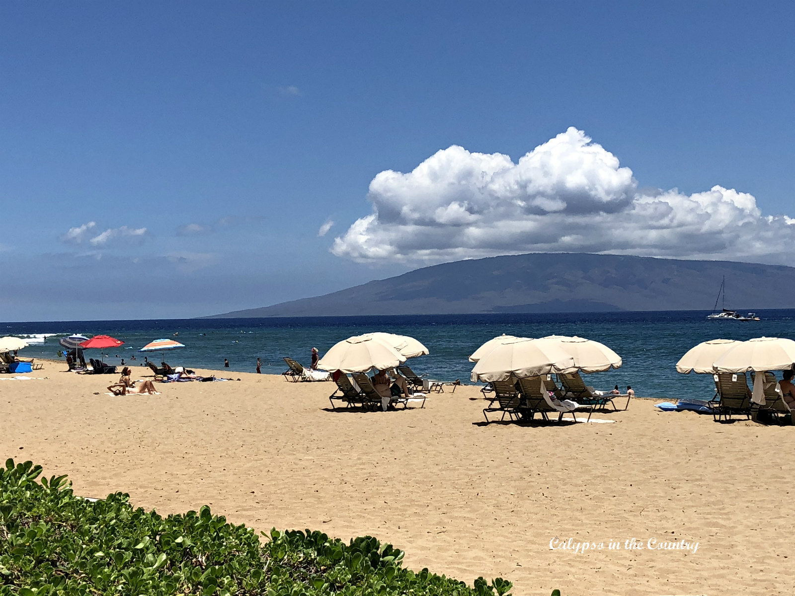 Kaanapali Beach in Maui and Favorite Books to Bring on Vacation