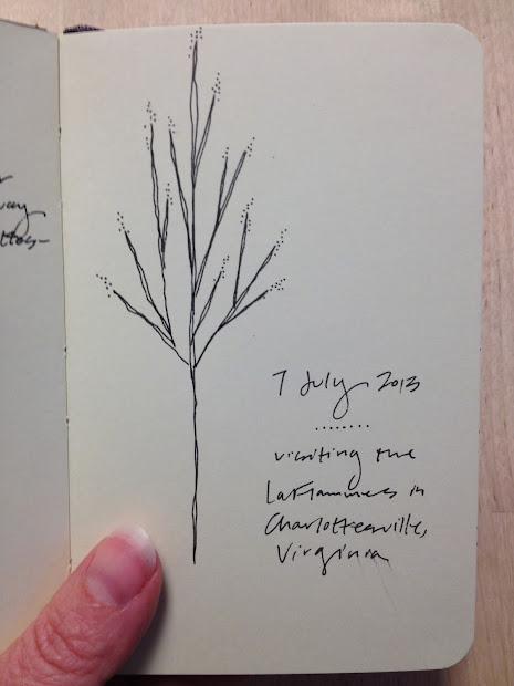 Sketchbook Challenge Nine Trees