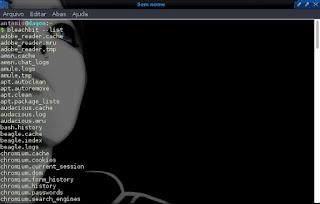 Bleachbit ações automatizadas no terminal