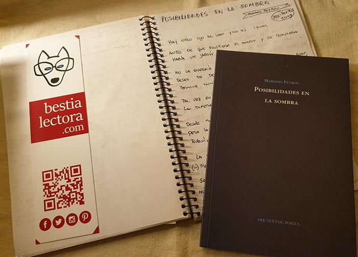 La poesía de Mariano Peyrou