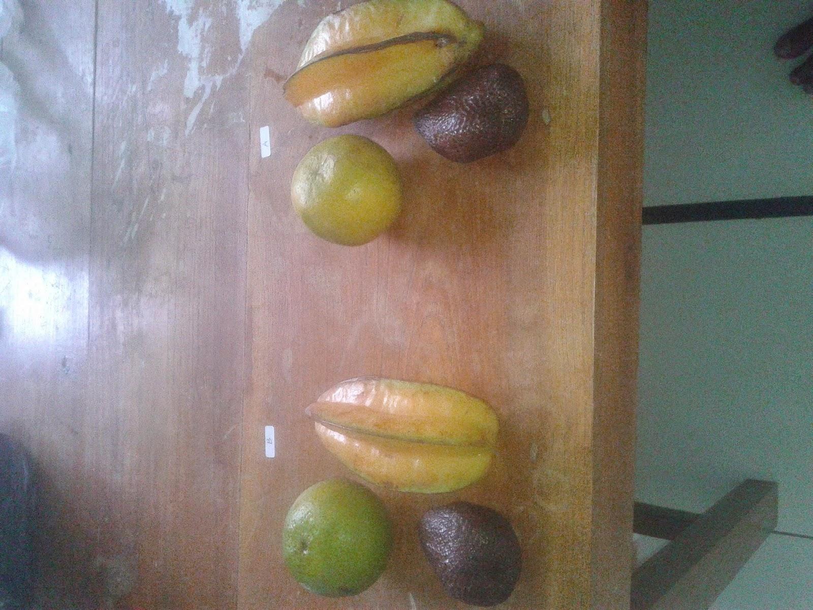 Pemanfaatan Ekstrak Daun Kaktus Centong (Opuntia Cochenillifera) Sebagai Pengawet Alami Pada Buah-buahan