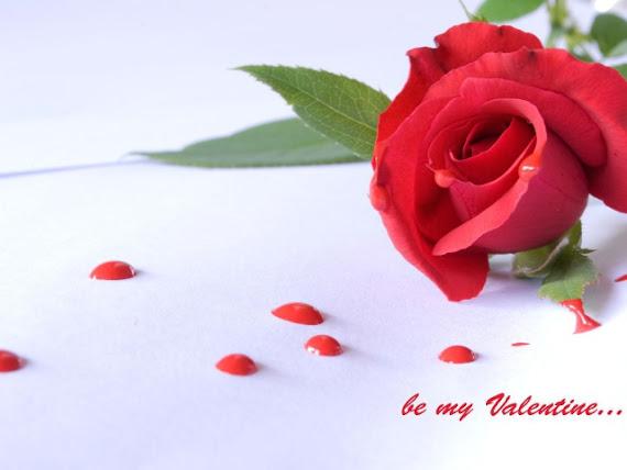 download besplatne slike za mobitele 640x480 čestitke Valentinovo dan zaljubljenih Happy Valentines Day