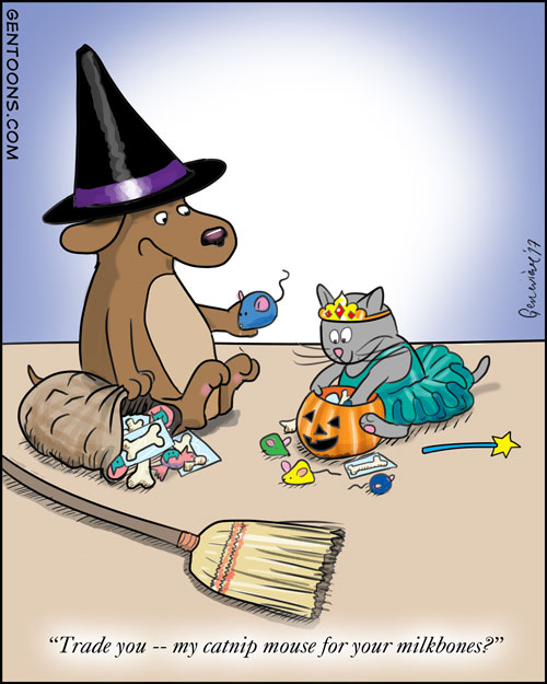 dog and cat dressed in costumes, going through their halloween candy.