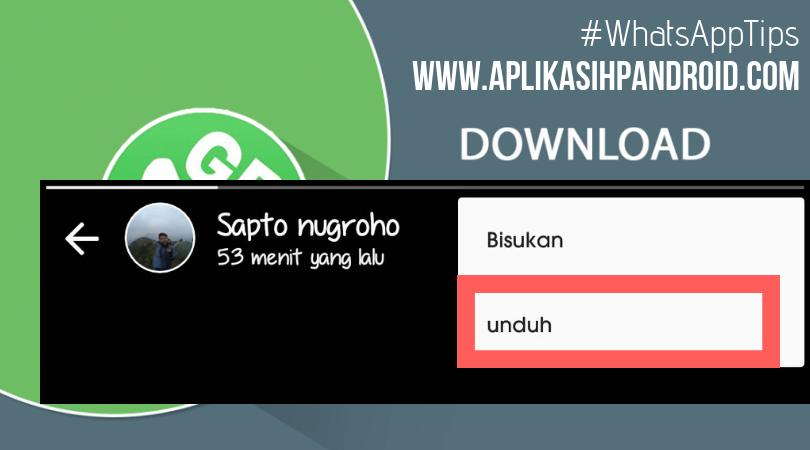 Cara simpan foto video di status whatsapp tanpa aplikasi