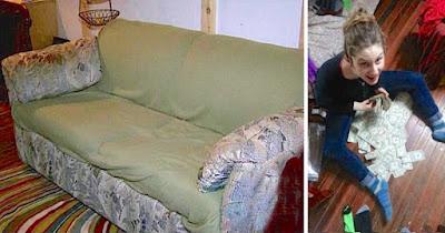 Beli Sofa Terpakai RM 80, Jumpa Duit Tersorok Dalam Tu RM 178, 898