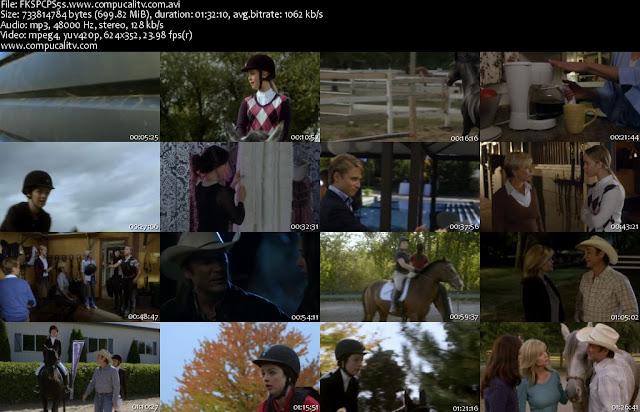Flicka Country Pride DVDRip Subtitulos Español Latino Descargar 1 Link 2012