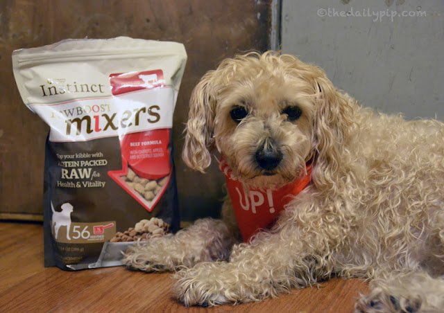 Ruby loves Nature's Variety Instinct Raw Boost Mixers