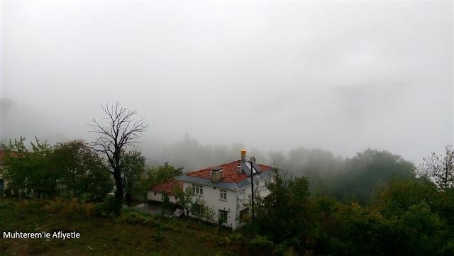 yağmurlu ve sisli hava