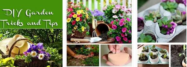 DIY Gardening Tiips App