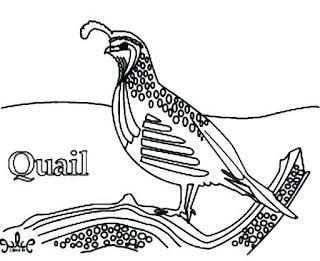 Pritable Quail Coloring Pages For Kids