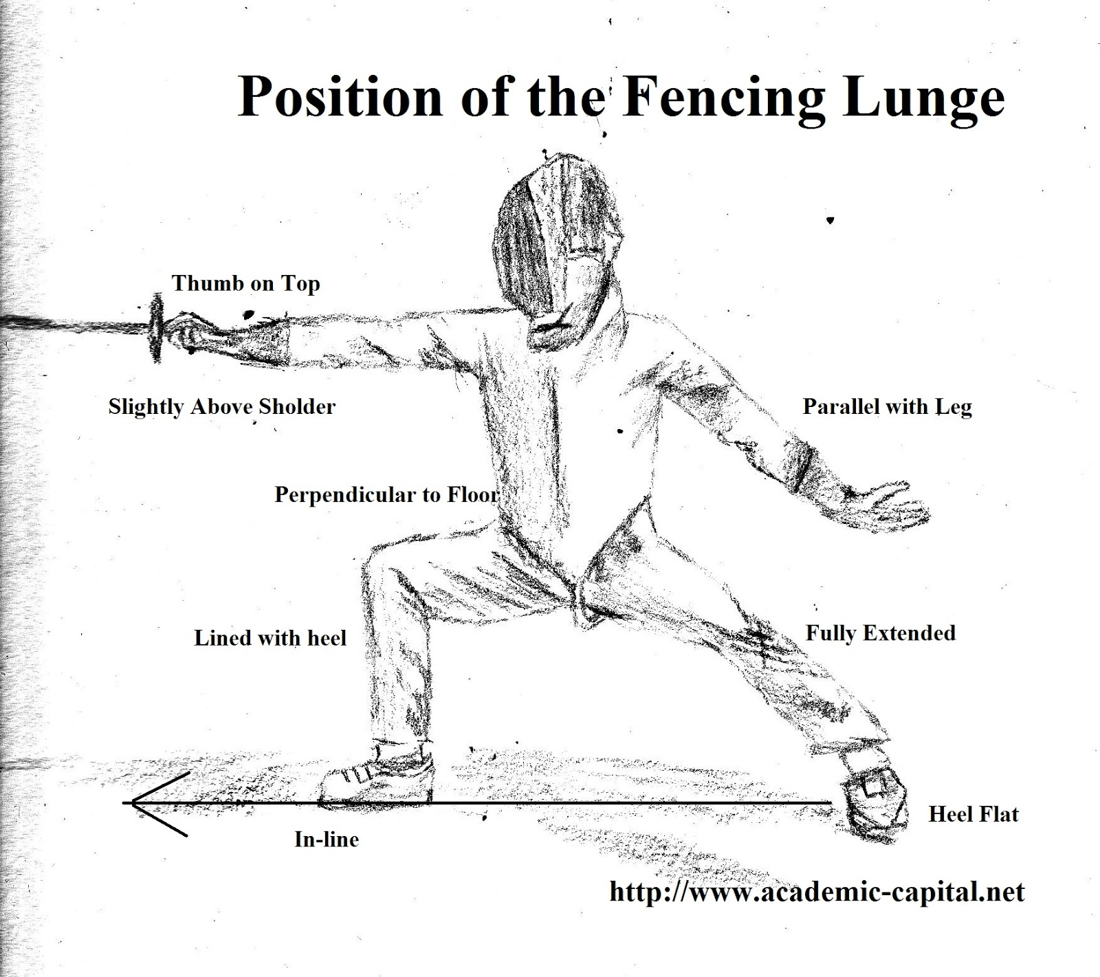 Academic Capital The Basics Of The Fencing Lunge