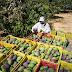 CNA encaminha propostas ao Ministério da Agricultura para ampliar oferta do Seguro Rural