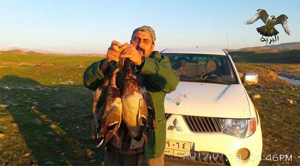 صور لصيد البط الصياد Rawchi من كوردستان العراق خلال موسم هجرة الطيور