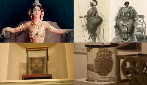 Müzede Sergilenen İlginç 10 Adet İnsan Organı