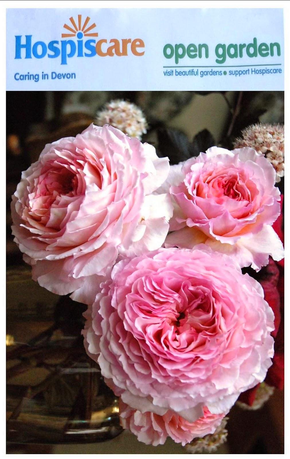 rose james galway