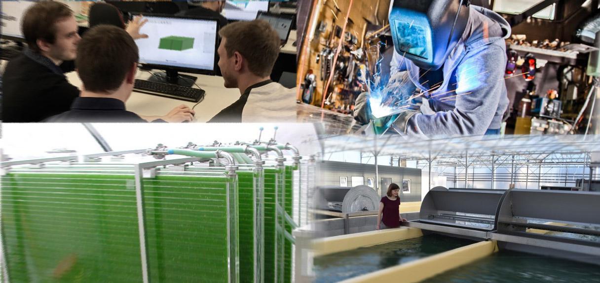 Sustainable Algae Production