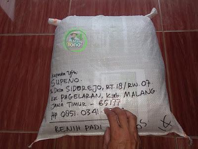 Benih Padi TRISAKTI Pesanan  SUPENO Malang, Jatim    (Sesudah di Packing)